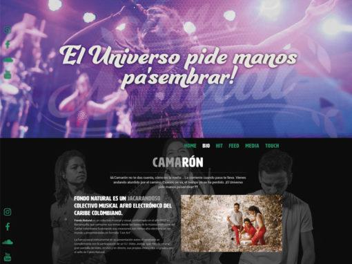 PÁGINAS WEB/ Para artistas, organizaciones y colectivos.